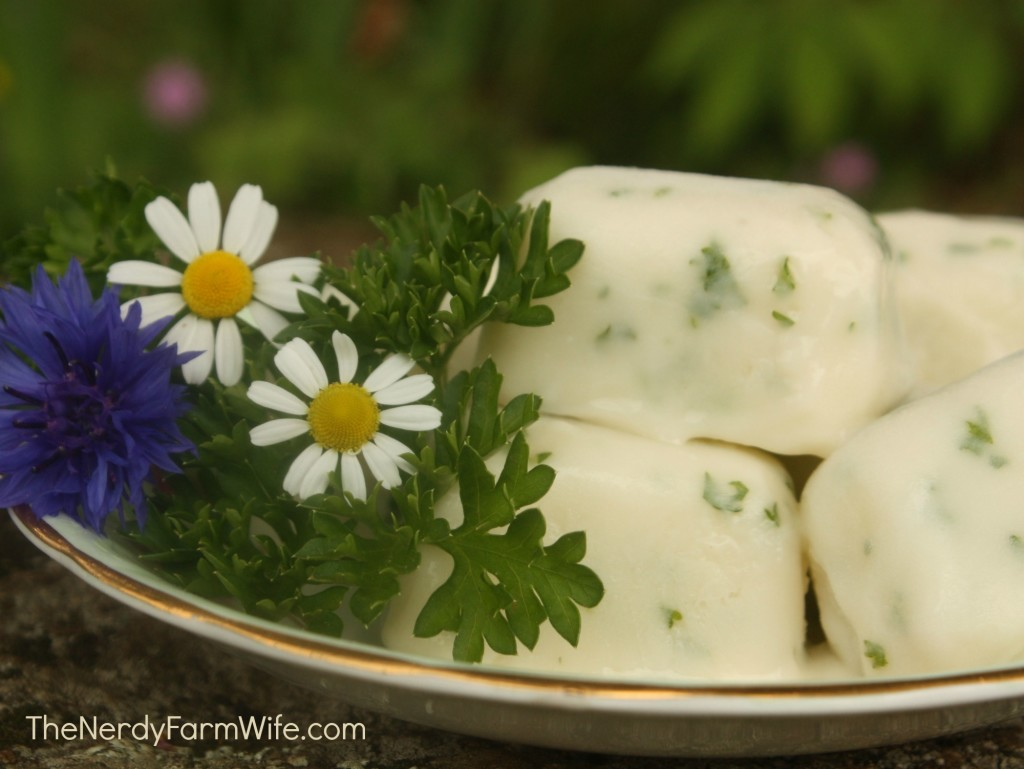 Homemade Dog Breath Freshener Treats With Parsley & Mint