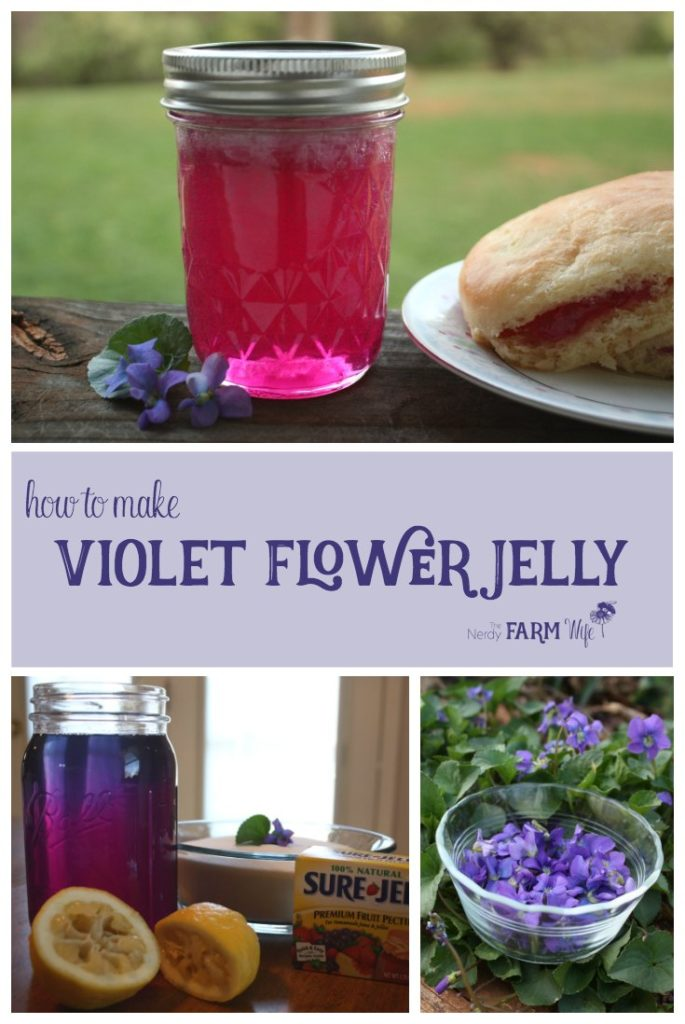 How to Make Violet Flower Jelly