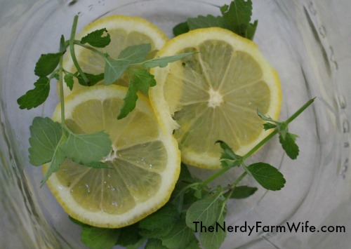 lemons and lemon balm