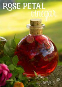 Beautiful Rose Petal Vinegar Recipe