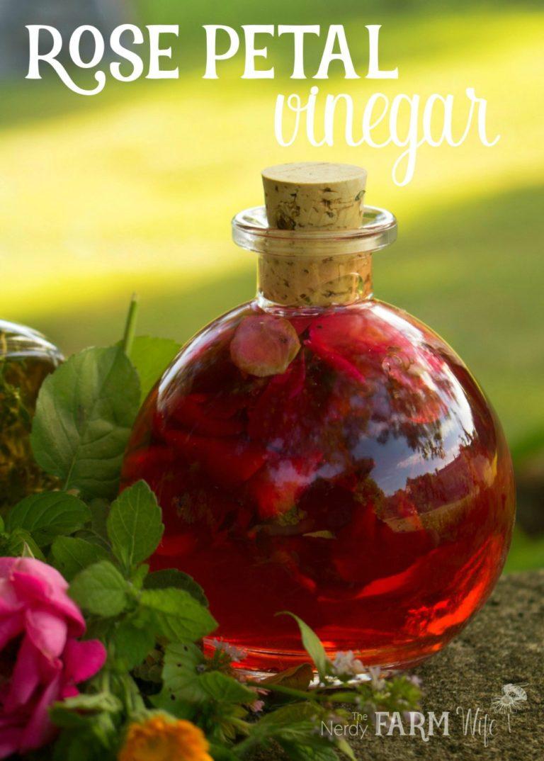 Rose Petal Vinegar + 7 Ways to Use It