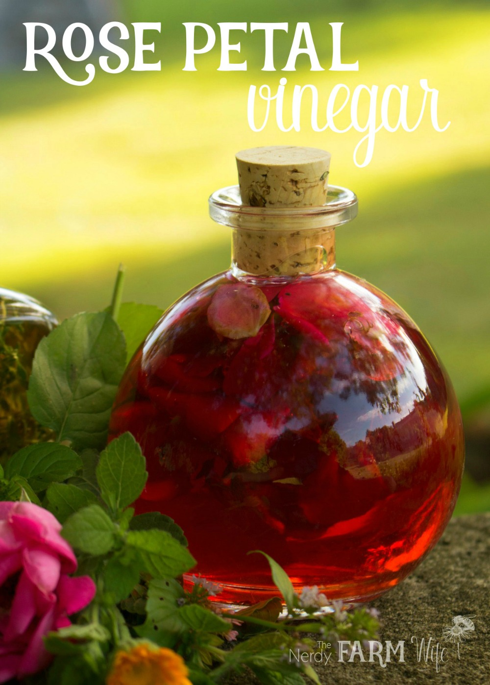 "glass jar filled with red rose infused vinegar, text says ""Rose Petal Vinegar"""