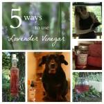 Lavender Vinegar & 5 Ways To Use It