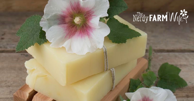 two shampoo bars on wooden soap dish with fresh hollyhocks