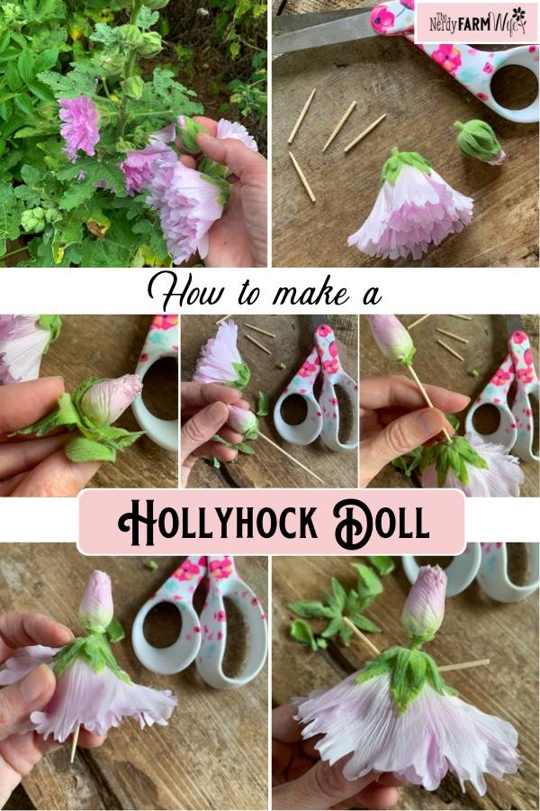 photo grid showing the steps how to make a hollyhock doll