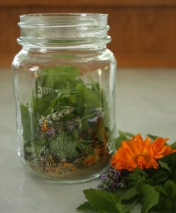 a jar with assorted fresh herbs