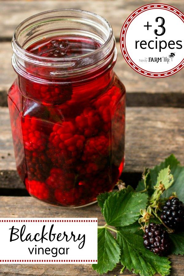 a canning jar of blackberries and vinegar