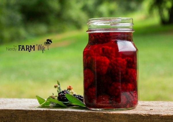 jar of blackberry vinegar on a wooden fence