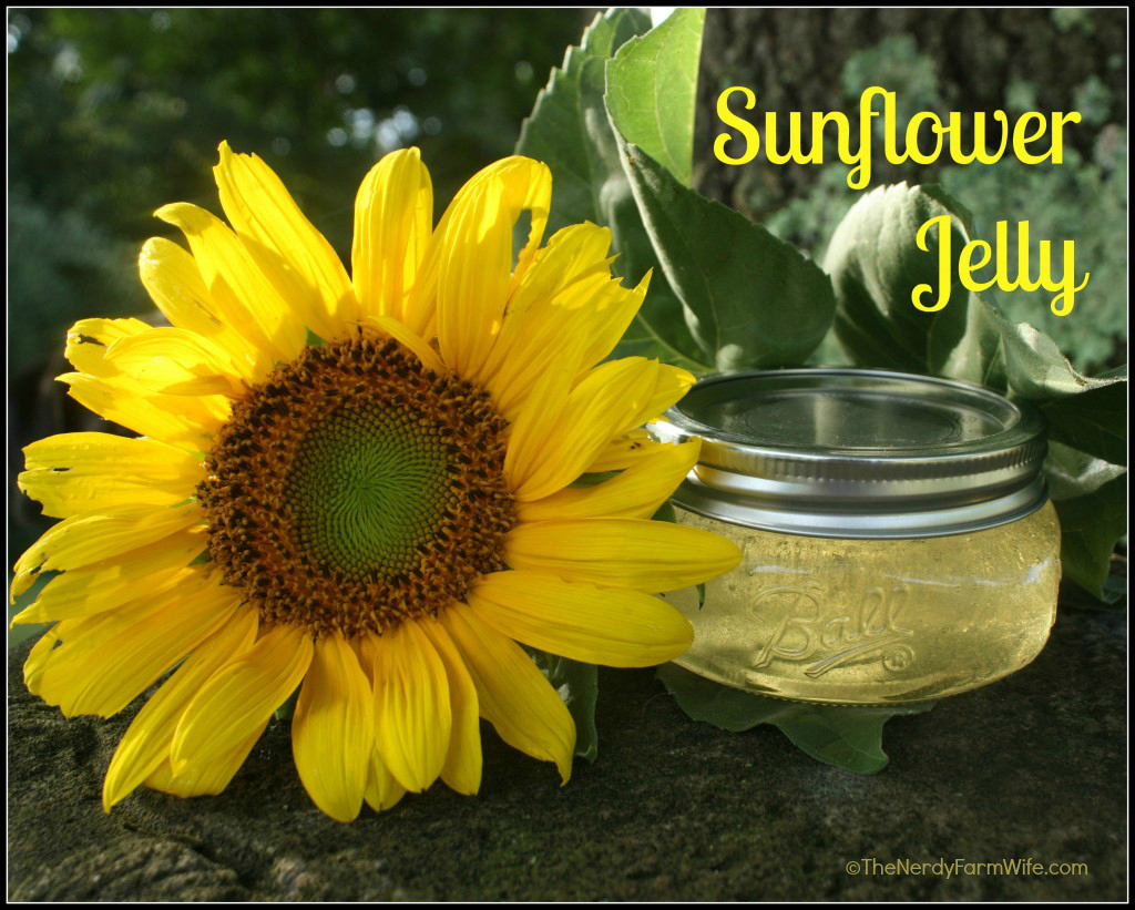 Sunflower Jelly