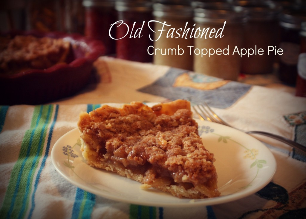 Old Fashioned Crumb Topped Apple Pie