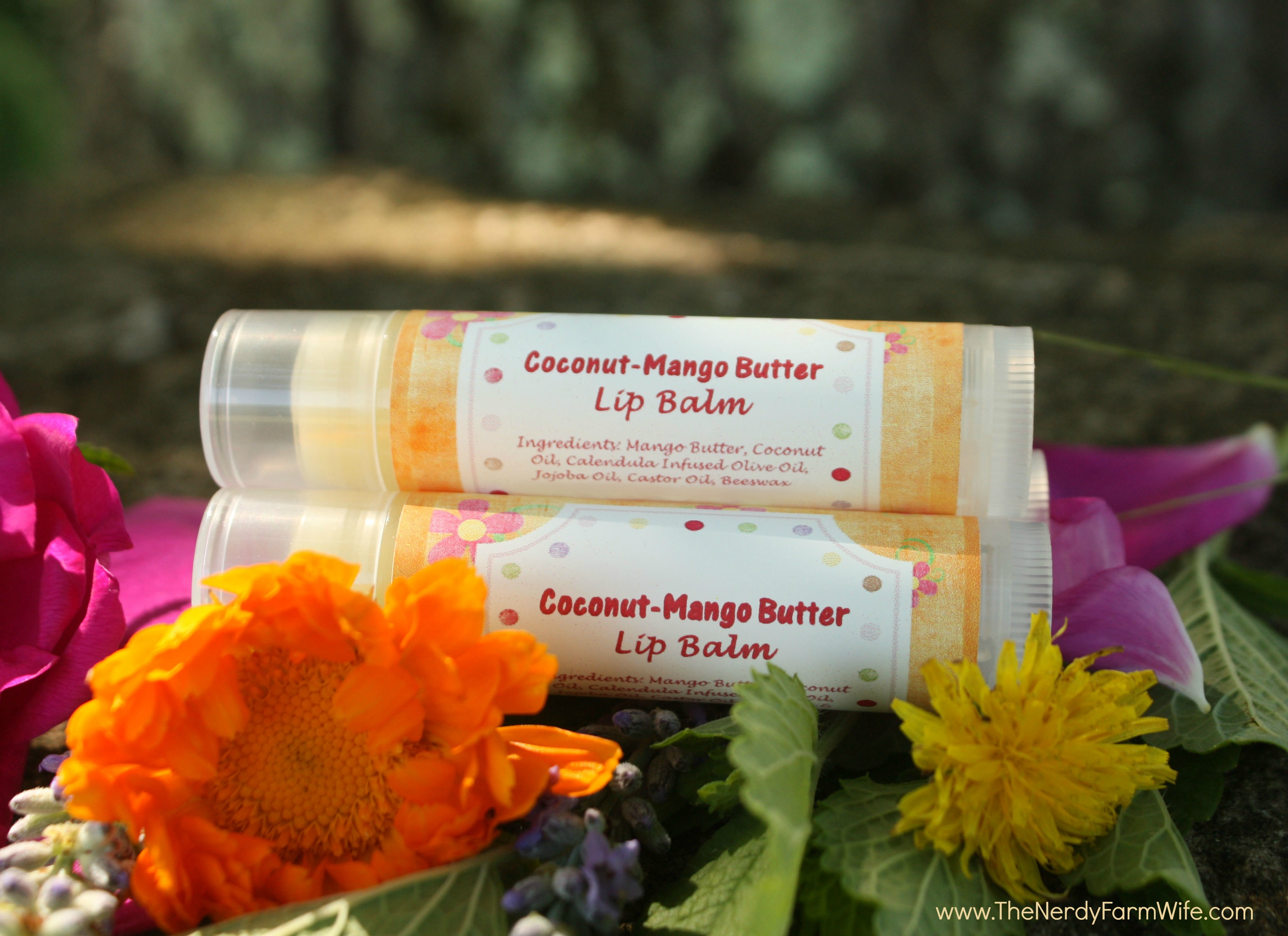 Coconut Mango Butter Lip Balm
