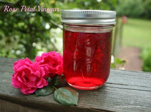 Rose Petal Vinegar