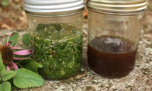 jars of tincture
