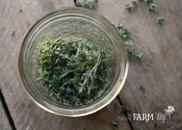 thyme in jar for herbal infused vinegar