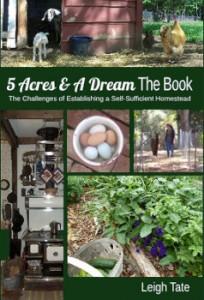 5 Acres & A Dream