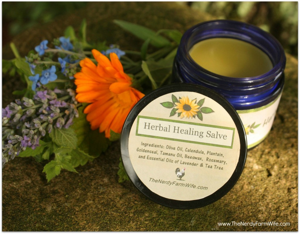 Homemade DIY Herbal Healing Salve Recipe Made With Tamanu Oil