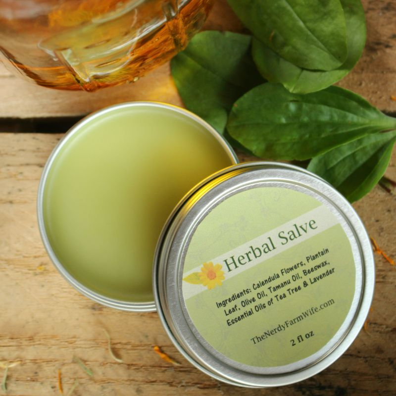 Herbal Healing Salve Recipe
