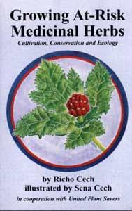 growing-at-risk-medicinal-herbs