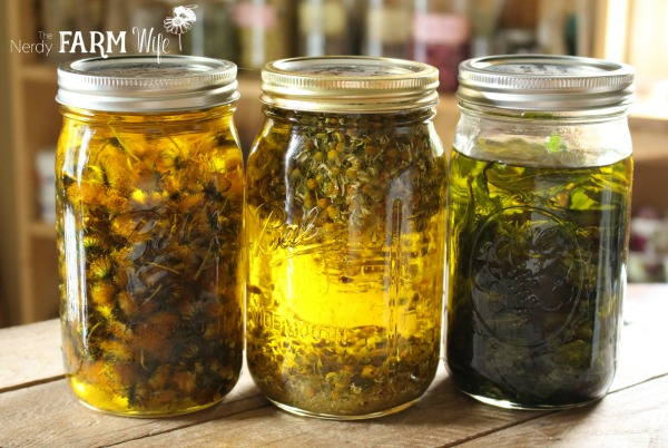 herbal infusions for DIY lip balms