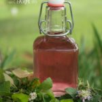 Lavender Infused Vinegar & 5 Ways to Use It