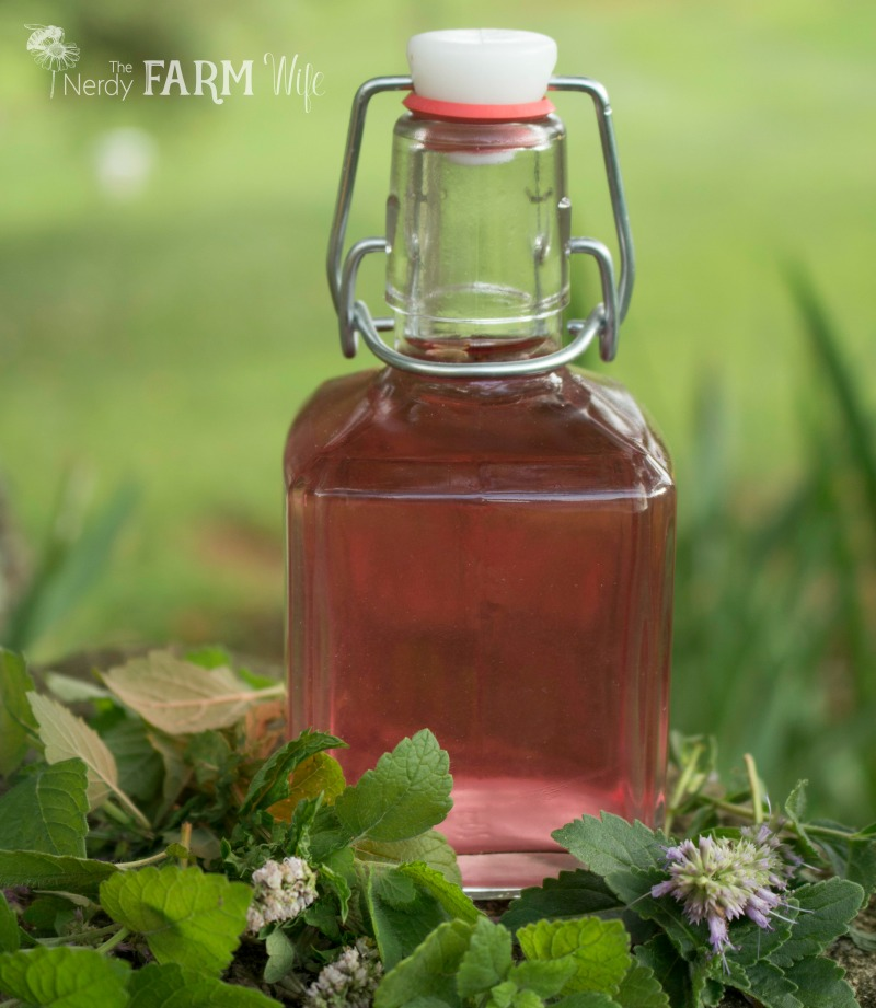 Lavender Infused Vinegar