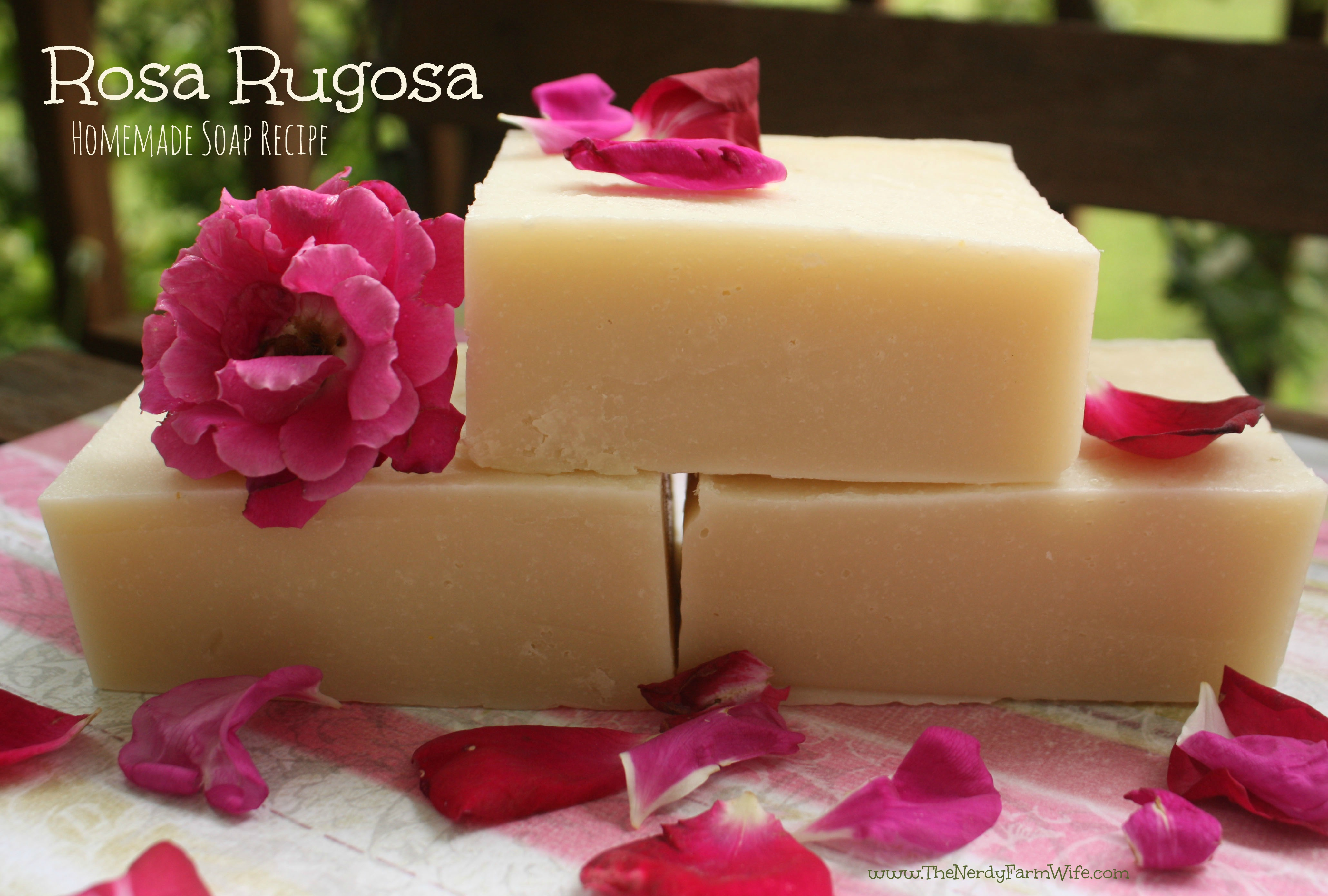 Rosa Rugosa Homemade Palm Free Soap Recipe