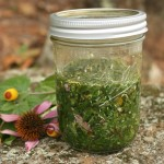 cold and flu tincture