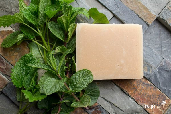 Healing Skin Soap Recipe