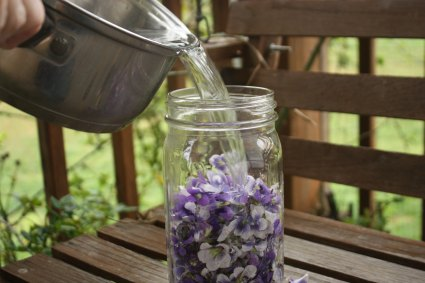 Infusing Violet Flowers