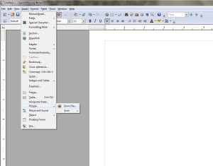 Blank OpenOffice Writer Document