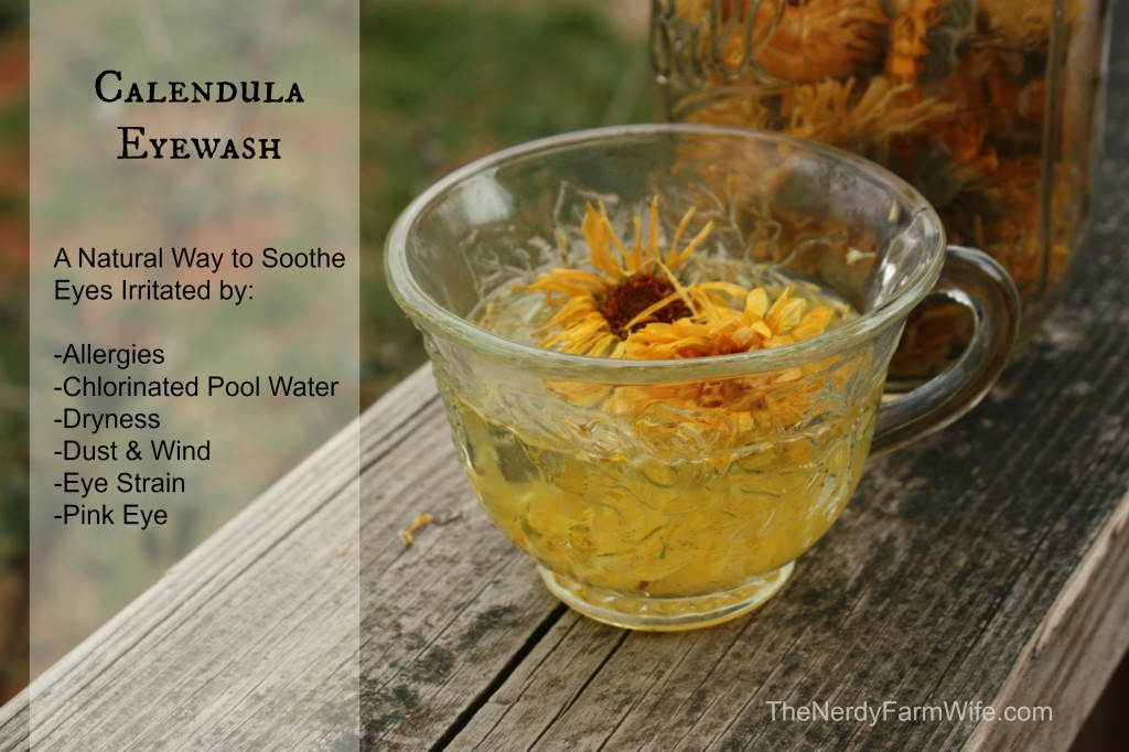 Calendula Eyewash Natural Remedy for Irritated Eyes