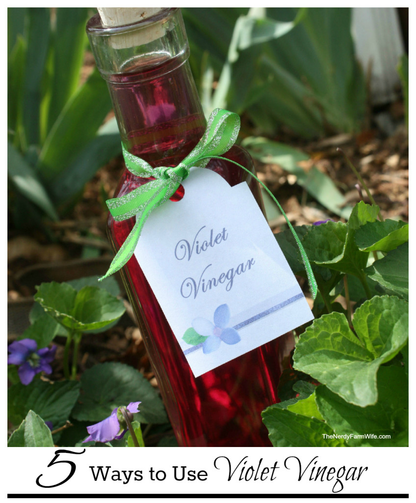 How to Make Violet Vinegar & 5 Ways to Use It