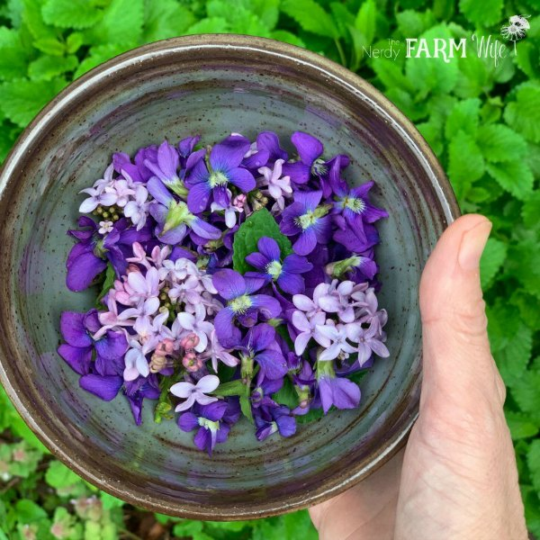 handmade pottery bowl with violets and lilac flowers