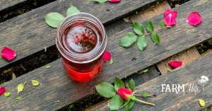 jar of rose infused witch hazel on a wooden pallet with fresh roses