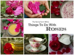 Cover Rose eBook 300 px