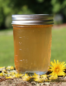 traditional Scandinavian dandelion and green apple syrup recipe