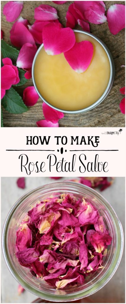 How to Make Rose Petal Salve