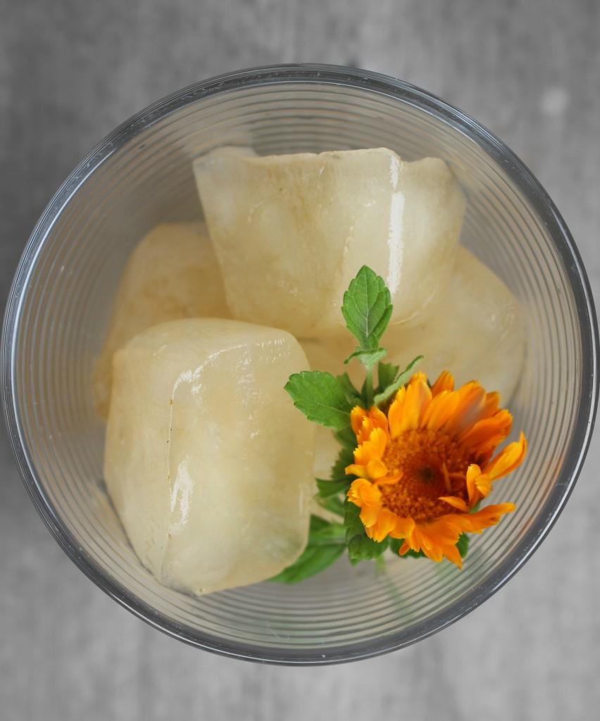 14 Uses For Calendula Tea The Nerdy Farm Wife