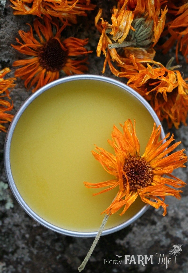 Easy DIY Calendula Salve Recipe