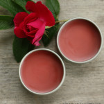 Peppermint Rose Lip Balm