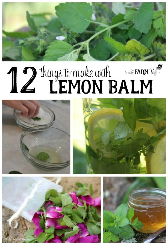 12 Things to Make With Lemon Balm