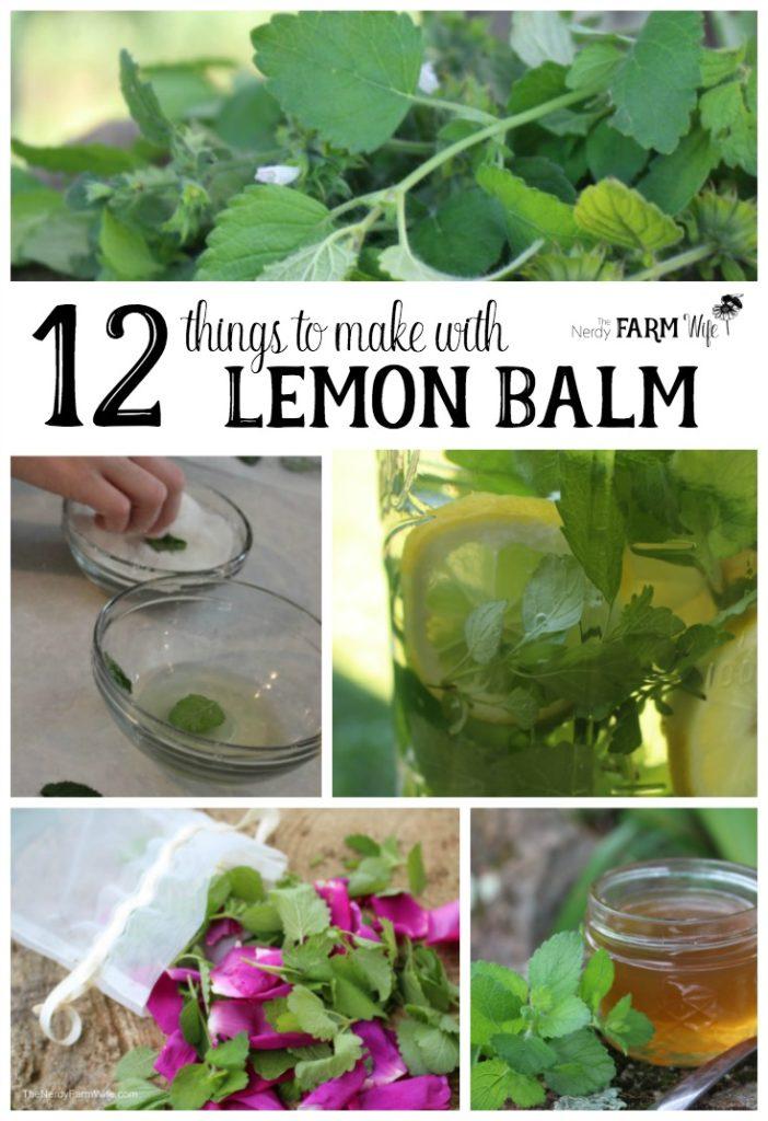 12 Things to Make With Lemon Balm