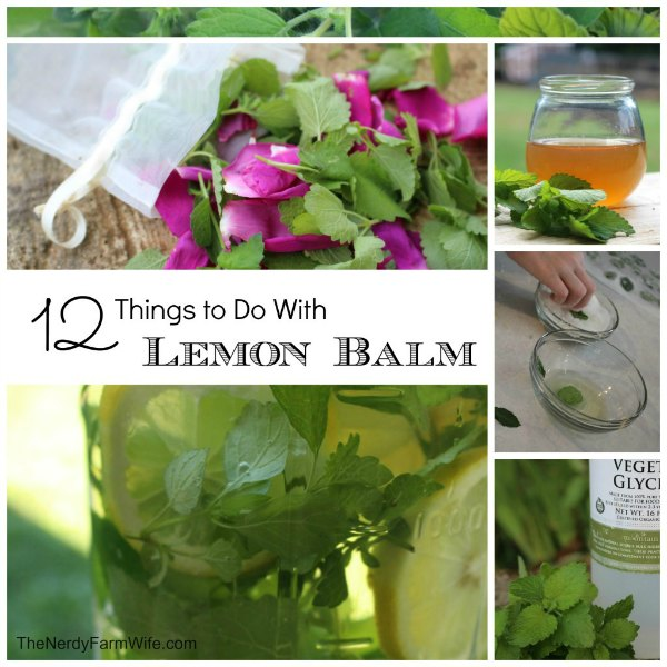 "collage of things you can make using fresh lemon balm leaves, text says ""12 Things to Do with Lemon Balm"""