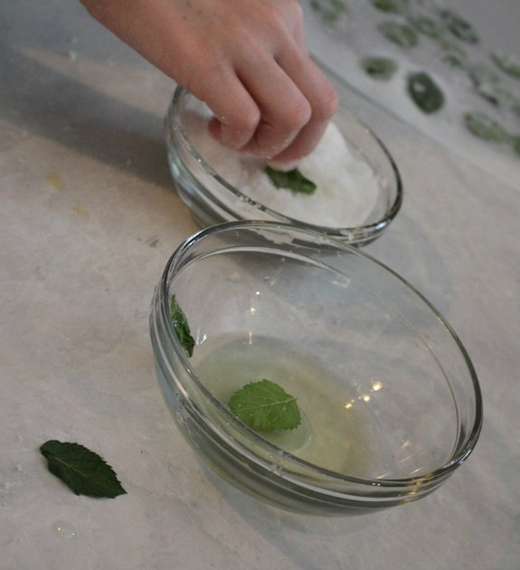 bowl of sugar, bowl of egg white, girl's hand dipping fresh lemon balm leaves in sugar