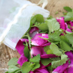 Lemon Balm & Roses Bath Bag