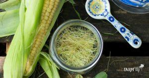 jar of freshly gathered corn silk