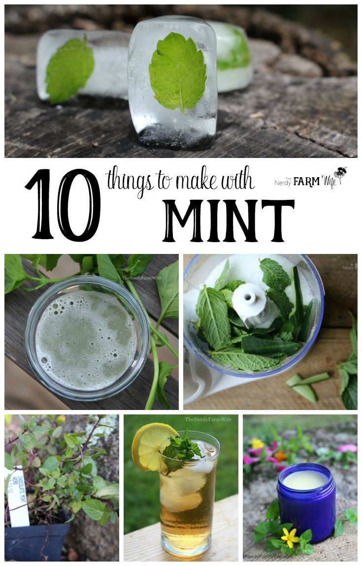 10 Things to Make With Mint