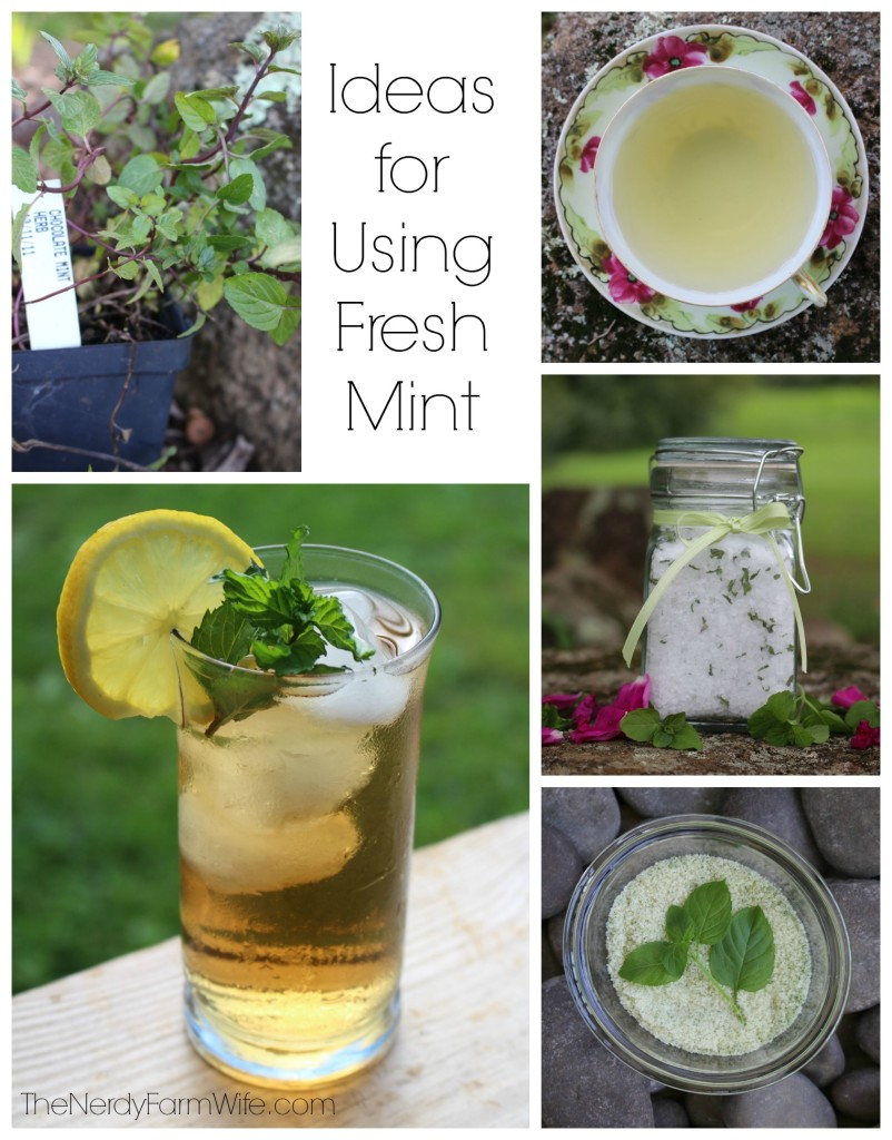 Ideas for Using Fresh Mint