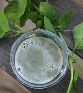 Mint Clay Shampoo Treatment