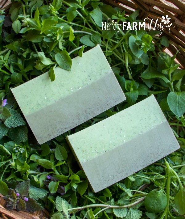 two bars of herbal infused soap